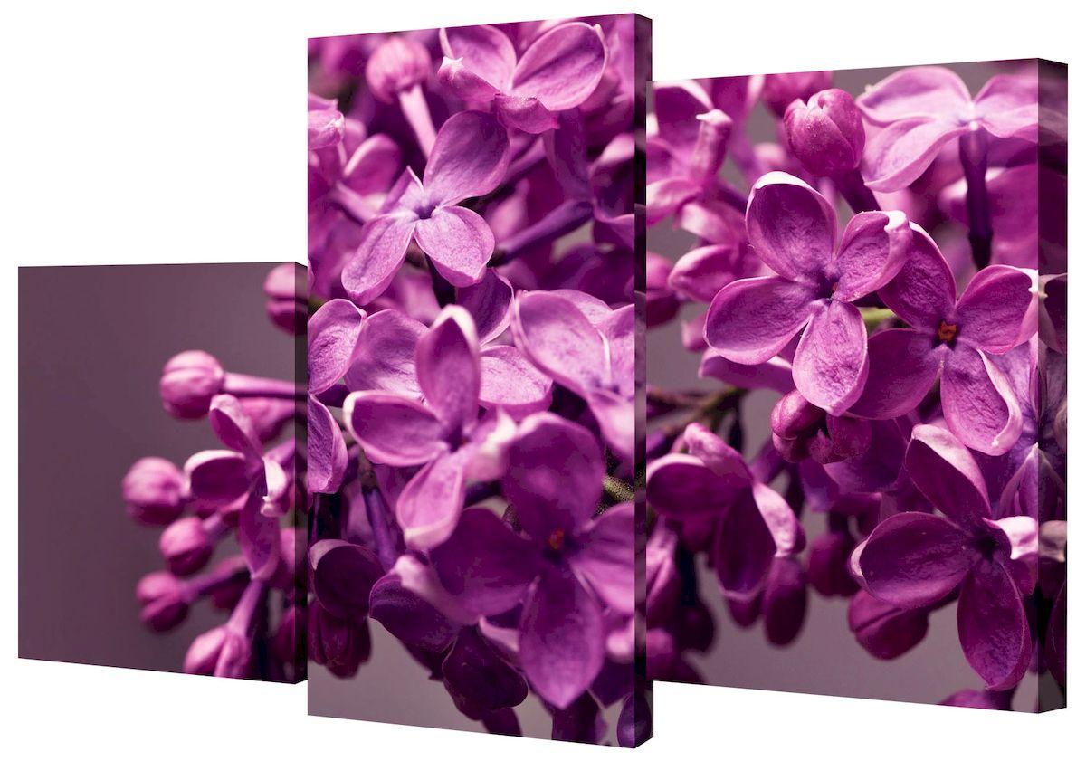 Картина модульная Toplight Цветы, 50 х 78 см. TL-MM100612723Модульная картина Toplight Цветы выполнена из синтетического полотна, подрамник из МДФ. Картина состоит из трех частей и выглядит очень аккуратно и эстетично благодаря такому способу оформления как галерейная натяжка. Подрамник исключает провисание полотна. Современные технологии, уникальное оборудование и цифровая печать, используемые в производстве, делают постер устойчивым к выцветанию и обеспечивают исключительное качество произведений. Благодаря наличию необходимых креплений в комплекте установка не займет много времени. Модульная картина - это прекрасная возможность создать яркий акцент при оформлении любого помещения. Изделие обязательно привлечет внимание и подарит немало приятных впечатлений своим обладателям. Правила ухода: можно протирать сухой, мягкой тканью. Размеры модулей: 26 х 31 см, 26 х 50 см, 26 х 40 см. Рекомендованное расстояние между сегментами: 1 см. Толщина подрамника: 2 см.