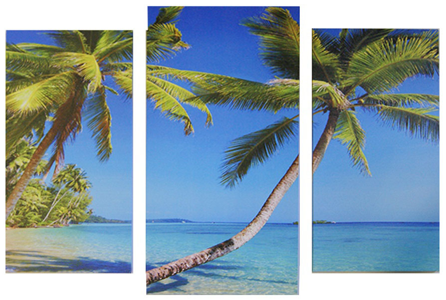 Картина модульная Proffi Home Райский остров. Триптих, 60 х 100 см1-412Композиция из трех частей. Материал: подрамник МДФ, фотопечать на текстурном холсте, УФ-лак. Упаковка: картонная подложка, п/э термоусадка. Вес 2,10кг