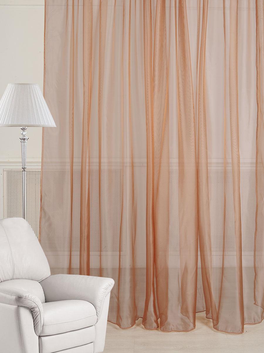 Тюль ТД Текстиль, на ленте, цвет: шоколадный, высота 260 см777002Тюль ТД Текстиль изготовлен из 100% полиэстера и великолепно украсит любое окно. Тюль из микровуали с легким эффектом блеска органично впишется в интерьер помещения. Полиэстер - вид ткани, состоящий из полиэфирных волокон. Ткани из полиэстера - легкие, прочные и износостойкие. Такие изделия не требуют специального ухода, не пылятся и почти не мнутся.Крепление к карнизу осуществляется с использованием ленты-тесьмы. Такой тюль идеально оформит интерьер любого помещения.Рекомендации по уходу:- ручная стирка,- можно гладить,- нельзя отбеливать.