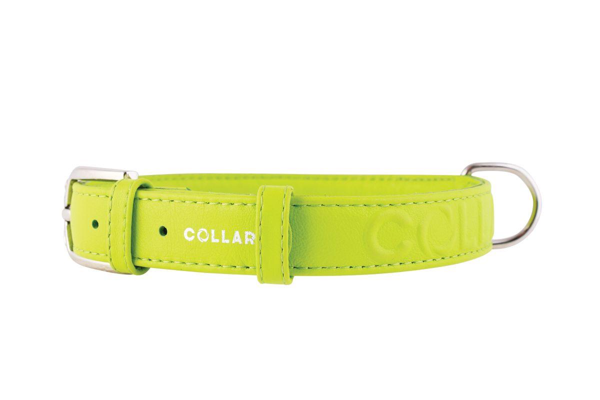 Ошейник CoLLaR Glamour, цвет: зеленый, ширина 25 мм, длина 38-49 см. 34575