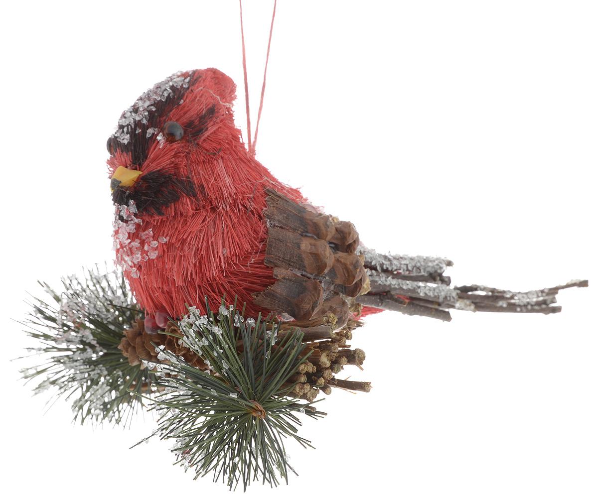Украшение новогоднее подвесное Winter Wings Птичка лесная сказка, 17 х 12 х 10 смN09322Новогоднее подвесное украшение Winter Wings Птичка лесная сказка прекрасно подойдет для праздничного декора новогодней ели. Изделие выполнено из полимерного материала и натурального дерева. Для удобного размещения на елке на украшении предусмотрена веревочка.Елочная игрушка - символ Нового года. Она несет в себе волшебство и красоту праздника. Создайте в своем доме атмосферу веселья и радости, украшая новогоднюю елку нарядными игрушками, которые будут из года в год накапливать теплоту воспоминаний. Откройте для себя удивительный мир сказок и грез. Почувствуйте волшебные минуты ожидания праздника, создайте новогоднее настроение вашим дорогим и близким.