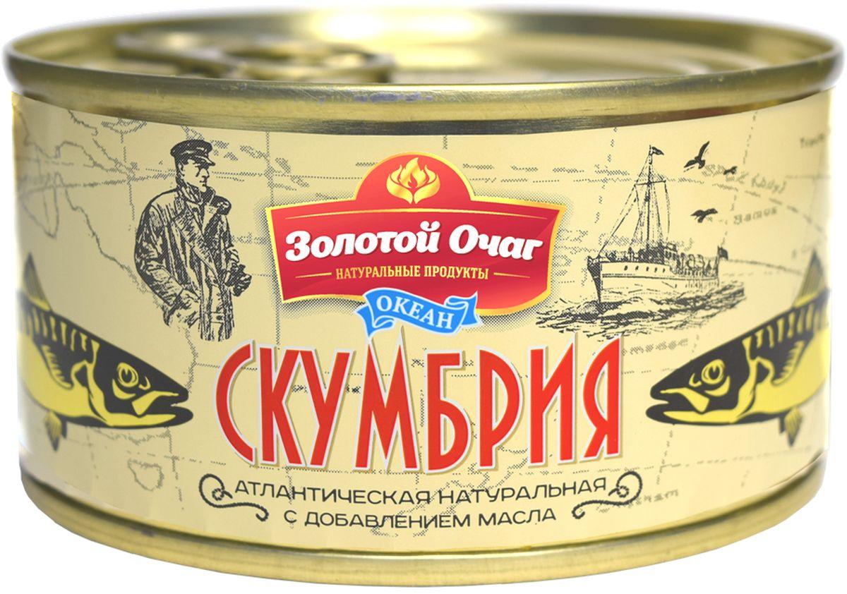 Золотой Очаг скумбрия натуральная с добавлением масла, 185 г0120710Консервированная скумбрия признана универсальным продуктом - и как самостоятельное блюдо нравится многим и в разных рецептах выступает главным ингредиентом.