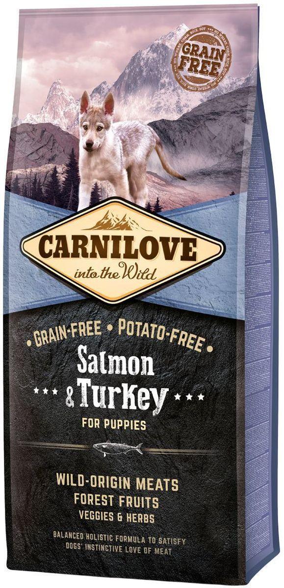 Корм сухой Carnilove, для щенков, беззерновой, с лососем и индейкой, 12 кг0120710Сбалансированный полнорационный сухой беззерновой корм для щенков крупных пород (? 25 кг, 3 – 30 месяцев). Cостав: мука из лосося (25%), мука из индейки (20%), желтый горох (18%), куриный жир (консервирован токоферолами, источником витамина е, 9%), цельные яйца (5%), гидролизованный куриный протеин (5%), крахмал из тапиоки (5%), яблоки (3%), куриная печень (3%), рыбий жир лососевый (2%), морковь (1%), льняное семя (1%), нут (1%), гидролизованные панцири ракообразных (источник глюкозамина, 0,031%), экстракт хряща (источник хондроитина, 0,019%), пивные дрожжи (источник маннан-олигосахаридов, 0,018%), корень цикория (источник фрукто-олигосахаридов, 0,012%), юкка шидигера (0,011%), водоросли (0,01%), псиллиум (0,01%), тимьян (0,01%), розмарин (0,01%), орегано (0,01%), клюква (0,0008%), голубика (0,0008%), малина (0,0008%).
