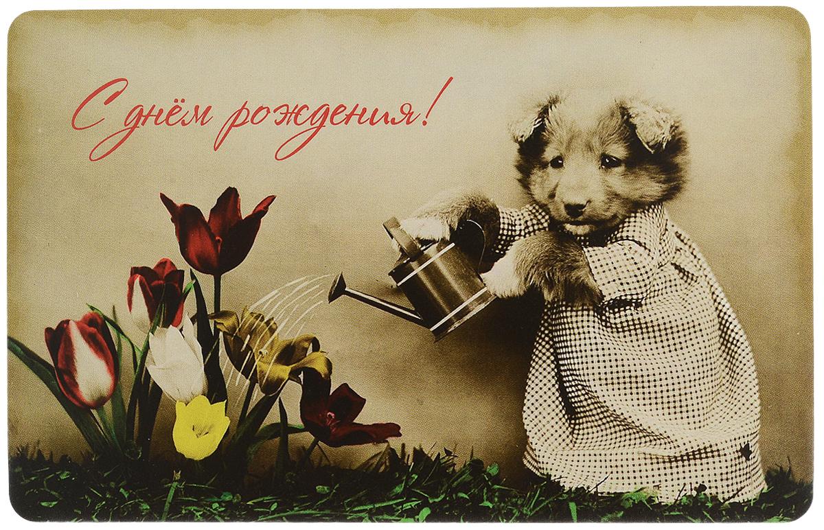 Открытка поздравительная в винтажном стиле №326. Авторская работа40685Оригинальная поздравительная открытка выполнена из плотного картона. На лицевой стороне расположено красочное изображение щенка, который поливает цветы. Необычная и яркая открытка в винтажном стиле поможет вам выразить чувства и передать теплые поздравления.Такая открытка станет великолепным дополнением к подарку или оригинальным почтовым посланием, которое, несомненно, удивит получателя своим дизайном и подарит приятные воспоминания.