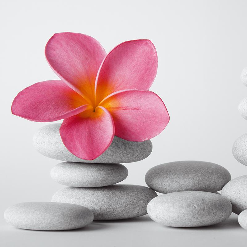 Картина Postermarket Розовый франжипани на камнях, 30 х 30 см. AG 30-174607161054567Картина Postermarket Розовый франжипани на камнях прекрасно подойдет для декора интерьера различных помещений. Картина для интерьера (постер) - это современное и актуальное направление в дизайне помещений. Ее можно использовать для оформления любых помещений (дом, квартира, офис, бар, кафе, ресторан или гостиница). Правильное оформление интерьера создает благоприятный психологический климат, улучшает настроение и мотивирует.Размер картины: 300 x 300 мм.