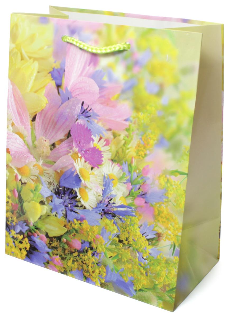 Пакет подарочный МегаМАГ Цветы, 18 х 22,7 х 10 см. 2139 MC0042416Подарочный пакет МегаМАГ, изготовленный из плотной ламинированной бумаги, станет незаменимым дополнением к выбранному подарку. Для удобной переноски на пакете имеются две ручки-шнурки.Подарок, преподнесенный в оригинальной упаковке, всегда будет самым эффектным и запоминающимся. Окружите близких людей вниманием и заботой, вручив презент в нарядном, праздничном оформлении.