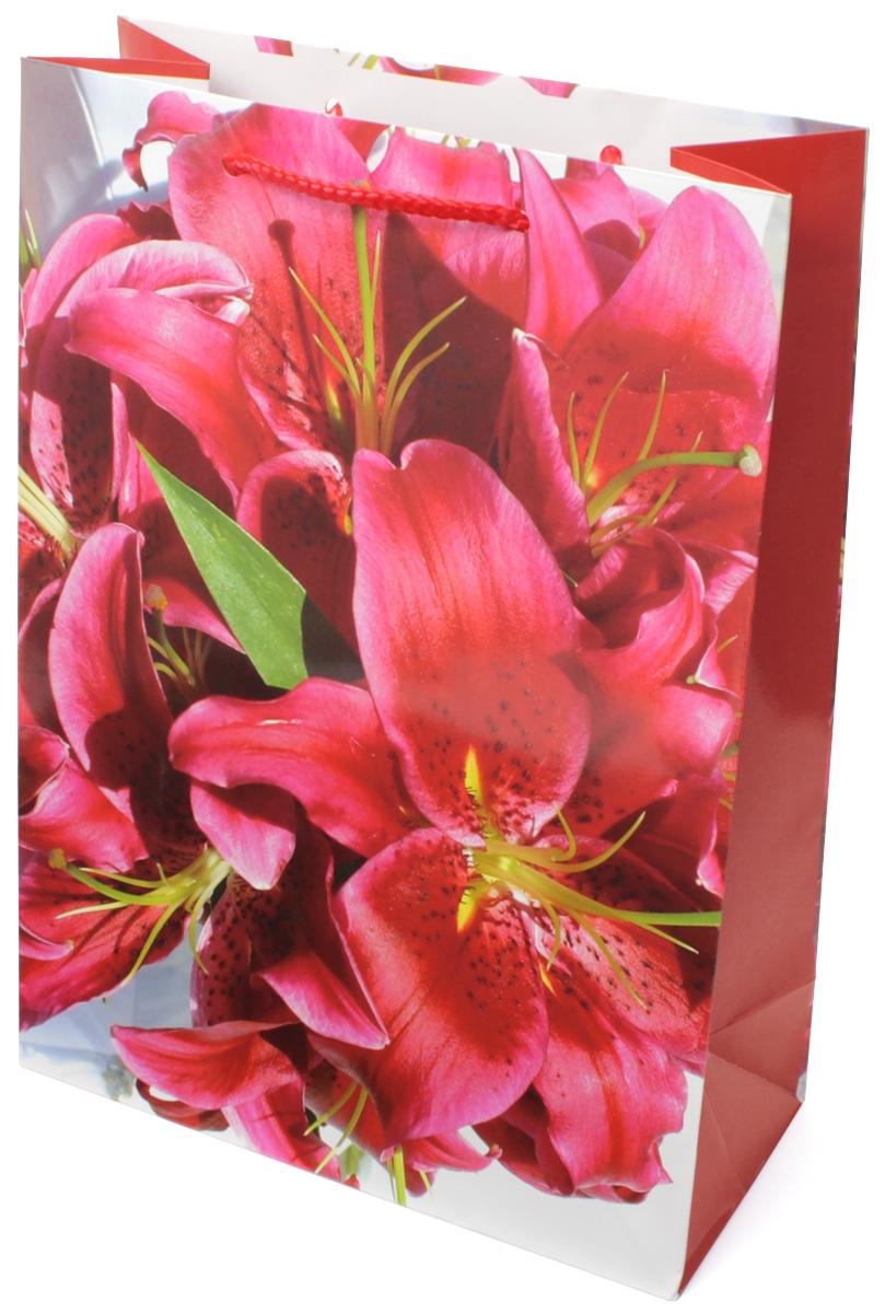 Пакет подарочный МегаМАГ Красные лилии, 22 х 31 х 10 см. 782 MLC0042416Подарочный пакет МегаМАГ, изготовленный из плотной ламинированной бумаги, станет незаменимым дополнением к выбранному подарку. Для удобной переноски на пакете имеются две ручки-шнурки.Подарок, преподнесенный в оригинальной упаковке, всегда будет самым эффектным и запоминающимся. Окружите близких людей вниманием и заботой, вручив презент в нарядном, праздничном оформлении.