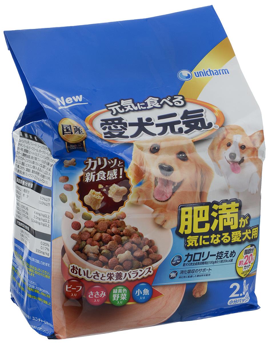 Корм сухой Unicharm Aiken Genki, для собак, склонных к ожирению, с говядиной, курицей, овощами и мелкой рыбой, 2,3 кг0120710Низкокалорийный сухой корм для собак, склонных к ожирению Unicharm Aiken Genki, разработан с применением высококачественных ингредиентов для поддержания оптимальной массы тела. Благодаря особой рецептуре продукт легко усваивается, позволяя питомцу получить важные питательные вещества и микроэлементы, а также кальций и фосфор, играющие важную роль в поддержании здоровья костей и зубов собаки. Особенностью продукта является пониженное содержание жира , что позволяет снизить нагрузку на печень и почки. В состав корма входят специальные пищевые волокна, которые нормализуют работу кишечника и способствуют улучшению пищеварения.Товар сертифицирован.