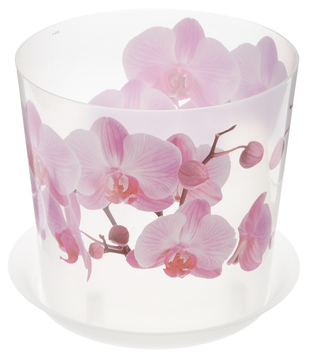 Кашпо Idea Деко, с подставкой, цвет: прозрачный, розовый, 2,4 л531-306Кашпо Idea Деко изготовлено из высококачественного полипропилена. Специальный поддон предназначен для стока воды. Изделие прекрасно подходит для выращивания растений и цветов в домашних условиях. Лаконичный дизайн впишется в интерьер любого помещения. Диаметр поддона: 17,5 см. Диаметр кашпо по верхнему краю: 16 см.Высота кашпо: 15 см.Объем кашпо: 2,4 л.