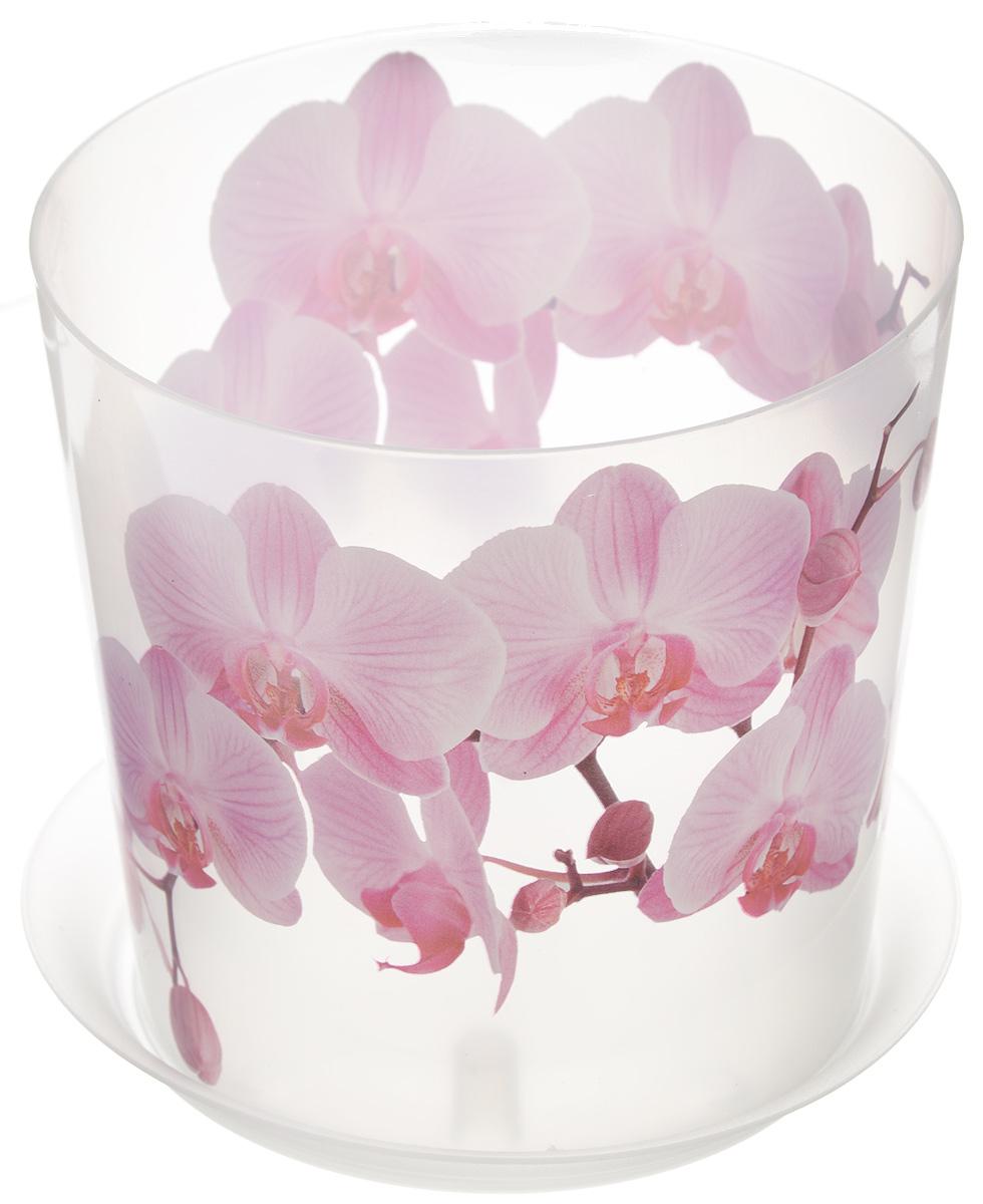 Кашпо Idea Деко, с подставкой, цвет: прозрачный, розовый, 1,2 л531-101Кашпо Idea Деко изготовлено из высококачественного полипропилена. Специальный поддон предназначен для стока воды. Изделие прекрасно подходит для выращивания растений и цветов в домашних условиях. Лаконичный дизайн впишется в интерьер любого помещения. Диаметр поддона: 13,5 см. Диаметр кашпо по верхнему краю: 12,5 см.Высота кашпо: 12 см.Объем кашпо: 1,2 л.