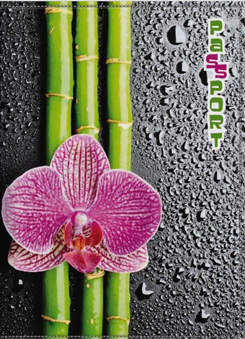 Обложка для паспорта женская КвикДекор Орхидея, цвет: черно-розовый. DC-15-0066-1DC-15-0066-1Оригинальная, яркая и качественная обложка для паспорта КвикДекор Орхидея изготовлена из качественной экокожи. Подходит для всех видов паспортов, как общегражданских, так и заграничных. Изображение устойчиво к стиранию. Изделие раскладывается пополам.Яркий современный дизайн, который является основной фишкой данной модели, будет радовать глаз.