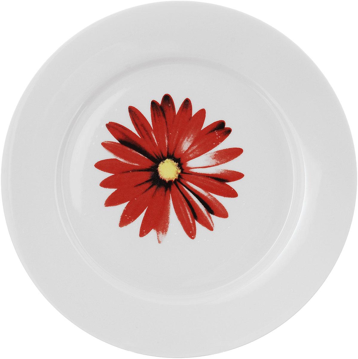 Тарелка Фарфор Вербилок Ромашка, диаметр 24 см115510Тарелка Фарфор Вербилок Ромашка, изготовленная из высококачественного фарфора, имеет классическую круглую форму. Она прекрасно впишется в интерьер вашей кухни и станет достойным дополнением к кухонному инвентарю. Тарелка Фарфор Вербилок Ромашка подчеркнет прекрасный вкус хозяйки и станет отличным подарком.Диаметр тарелки (по верхнему краю): 24 см.