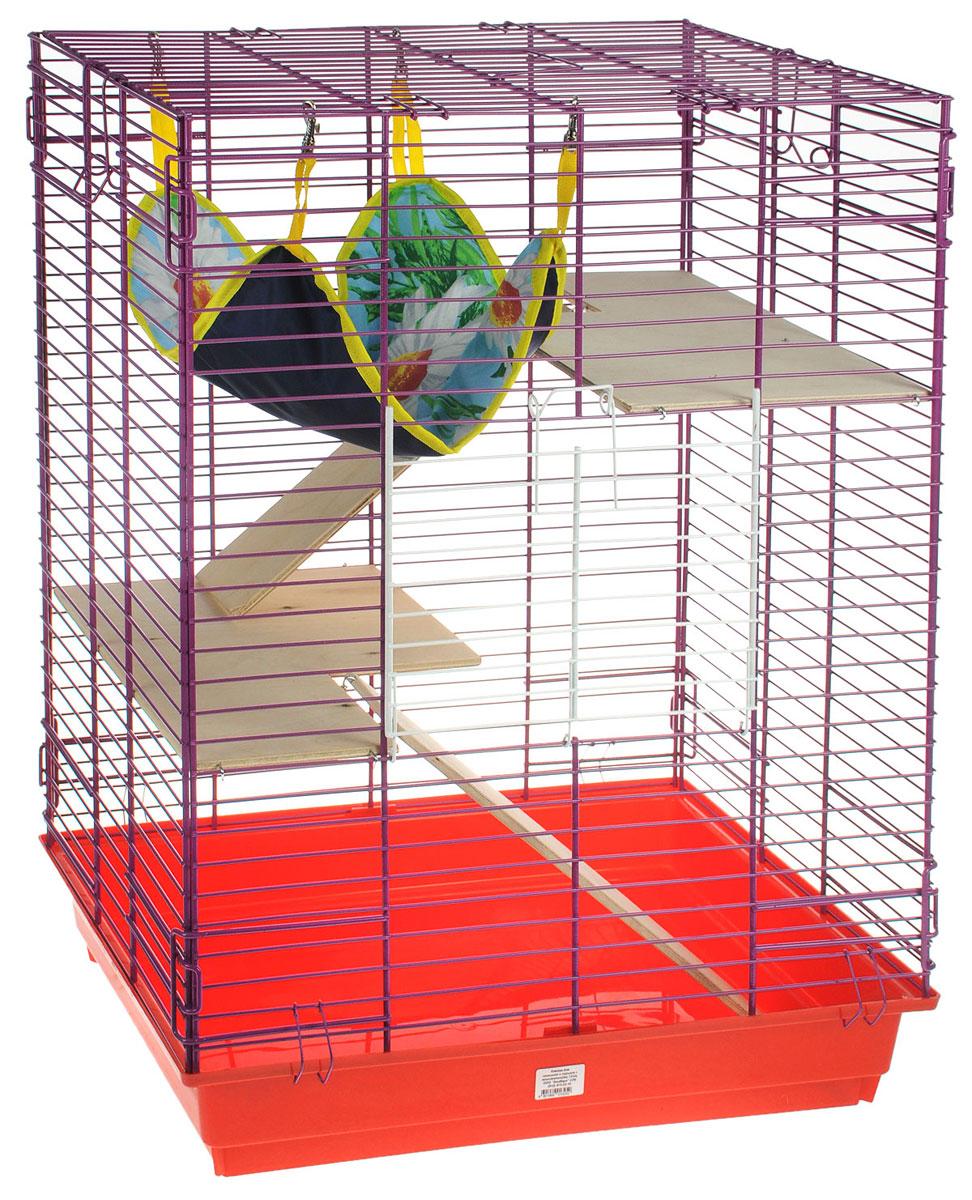 Клетка для шиншилл и хорьков ЗооМарк, цвет: красный поддон, фиолетовая решетка, 59 х 41 х 79 см. 725дк0120710Клетка ЗооМарк, выполненная из полипропилена и металла, подходит для шиншилл и хорьков. Большая клетка оборудована длинными лестницами и гамаком. Изделие имеет яркий поддон, удобно в использовании и легко чистится. Сверху имеется ручка для переноски. Такая клетка станет уединенным личным пространством и уютным домиком для грызуна.