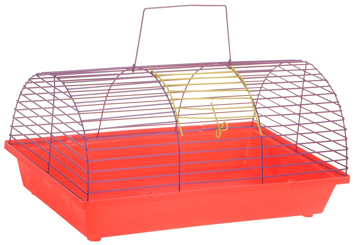 Клетка для грызунов ЗооМарк, цвет: красный поддон, фиолетовая решетка, 36 х 23 х 17,5 см0120710Клетка ЗооМарк, выполненная из полипропилена и металла, подходит для мелких грызунов. Она имеет яркий поддон, удобна в использовании и легко чистится. Сверху имеется ручка для переноски.Такая клетка станет уединенным личным пространством и уютным домиком для маленького грызуна.