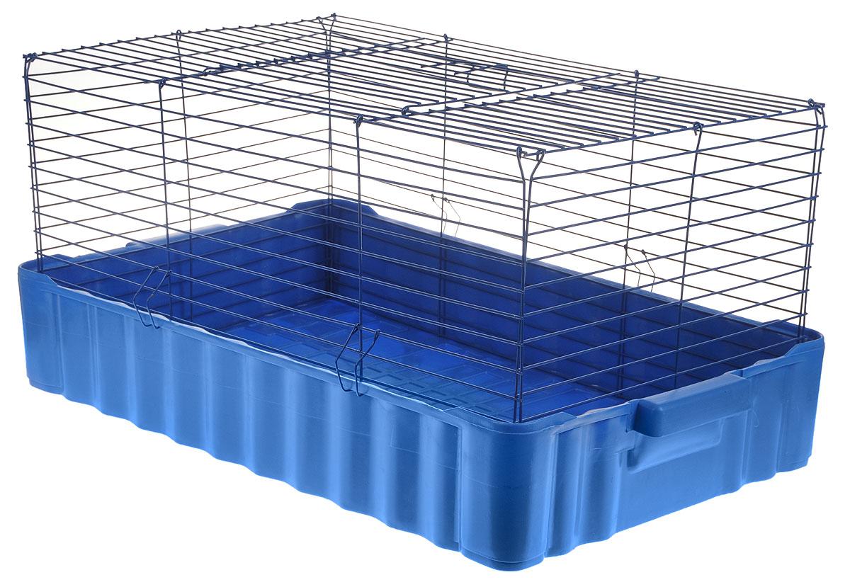 Клетка для кроликов ЗооМарк, цвет: синий поддон, синяя решетка, 75 х 46 х 40 см0120710Клетка для кроликов ЗооМарк, выполненная из металла и пластика, предназначена для содержания вашего любимца. Клетка имеет прямоугольную форму и очень просторна. Размеры позволят оснастить клетку всеми необходимыми предметами. Она очень легко собирается и разбирается. Такая клетка станет для вашего питомца уютным домиком и надежным убежищем.