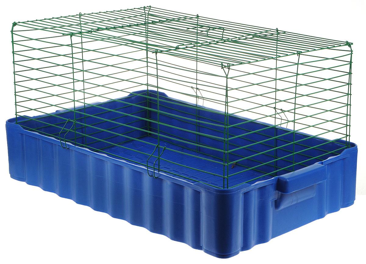 Клетка для кроликов ЗооМарк, цвет: синий поддон, зеленая решетка, 75 х 46 х 40 см0120710Клетка для кроликов ЗооМарк, выполненная из металла и пластика, предназначена для содержания вашего любимца. Клетка имеет прямоугольную форму и очень просторна. Размеры позволят оснастить клетку всеми необходимыми предметами. Она очень легко собирается и разбирается. Такая клетка станет для вашего питомца уютным домиком и надежным убежищем.Расстояние между прутьями: 2,1 см.