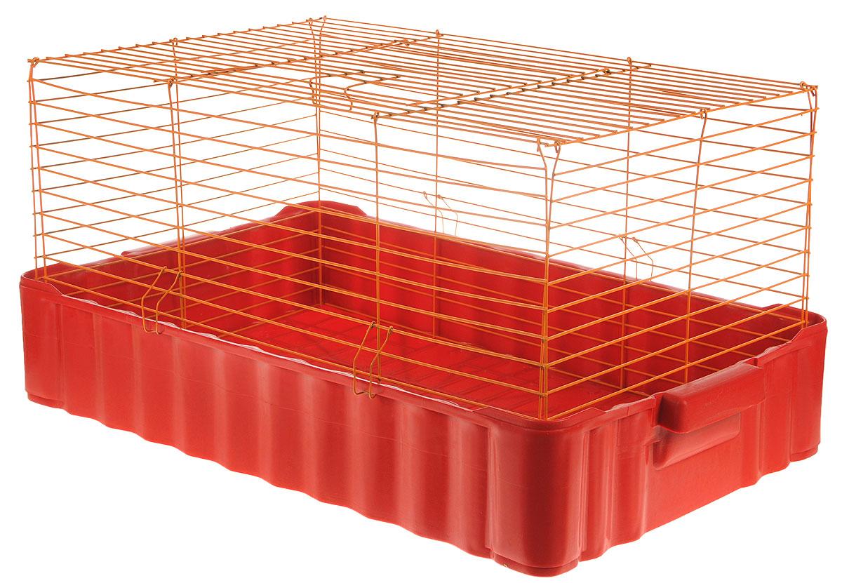 Клетка для кроликов ЗооМарк, цвет: красный поддон, оранжевая решетка, 75 х 46 х 40 см640КОКлетка для кроликов ЗооМарк, выполненная из металла и пластика, предназначена для содержания вашего любимца. Клетка имеет прямоугольную форму и очень просторна. Размеры позволят оснастить клетку всеми необходимыми предметами. Она очень легко собирается и разбирается. Такая клетка станет для вашего питомца уютным домиком и надежным убежищем.