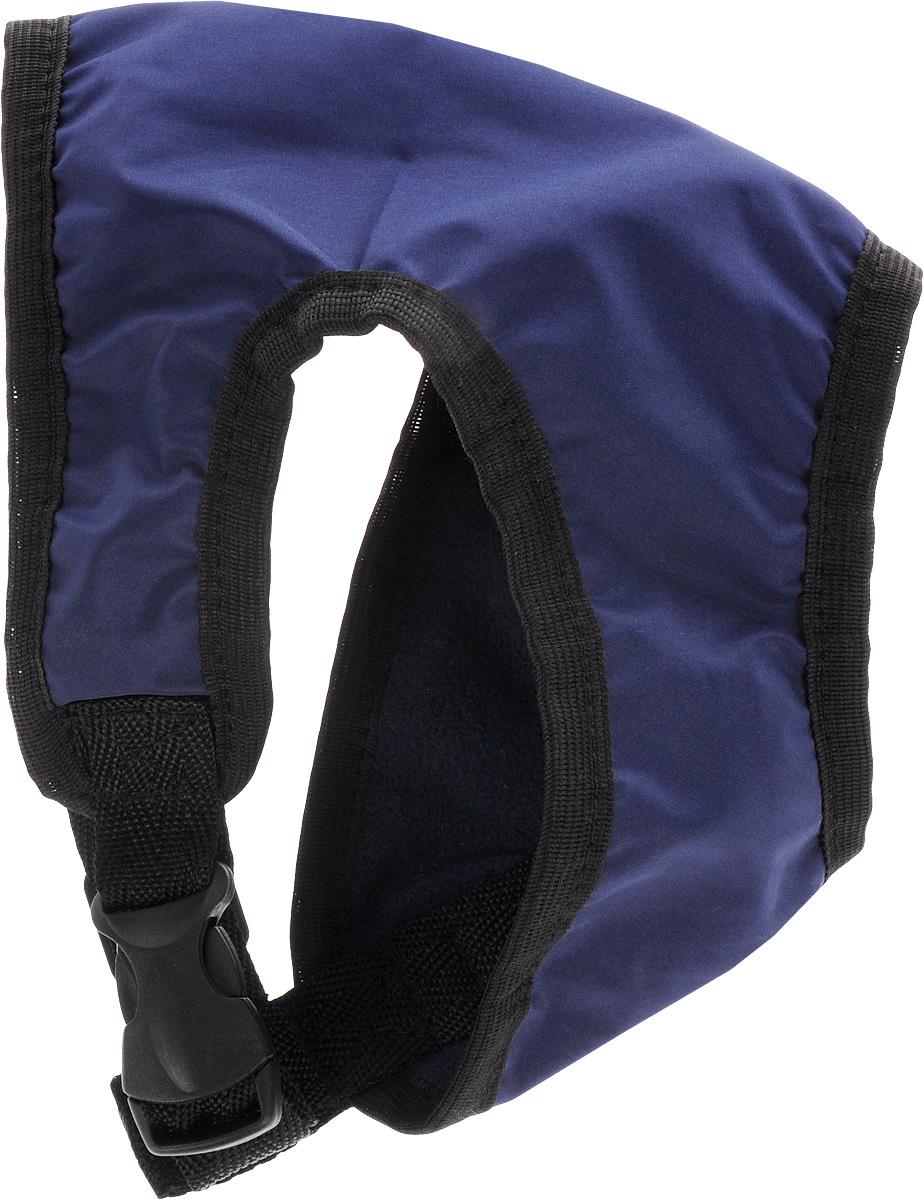Шлейка для собак ЗооМарк, цвет: синий, черный. Размер 148304174_бордоШлейка для собак ЗооМарк выполненаиз плащевки, а на подкладке используется флис. Изделие оснащено специальным крючком, к которому вы с легкостью сможете прикрепить поводок. Шлейка имеет застежку фастекс и регулируется при помощи пряжки.Шлейка - это альтернатива ошейнику. Правильноподобранная шлейка не стесняет движенияпитомца, не натирает кожу, поэтому животноечувствует себя в ней уверенно и комфортно.Изделие отличается высоким качеством,удобством и универсальностью.Обхват груди: 22-25 см. Длина спинки: 14 см. Ширина ремней: 2 см.