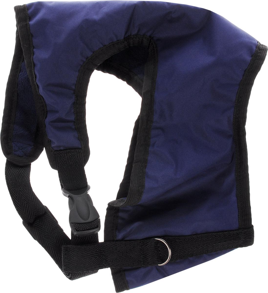 Шлейка для собак ЗооМарк, цвет: синий, черный. Размер 30120710Шлейка для собак ЗооМарк выполненаиз оксфорда, а на подкладке используется флис. Изделие оснащено специальным крючком, к которому вы с легкостью сможете прикрепить поводок. Шлейка имеет застежку фастекс и регулируется при помощи пряжки.Шлейка - это альтернатива ошейнику. Правильноподобранная шлейка не стесняет движенияпитомца, не натирает кожу, поэтому животноечувствует себя в ней уверенно и комфортно.Изделие отличается высоким качеством,удобством и универсальностью.Обхват груди: 25-30 см. Длина спинки: 17 см. Ширина ремней: 2 см.