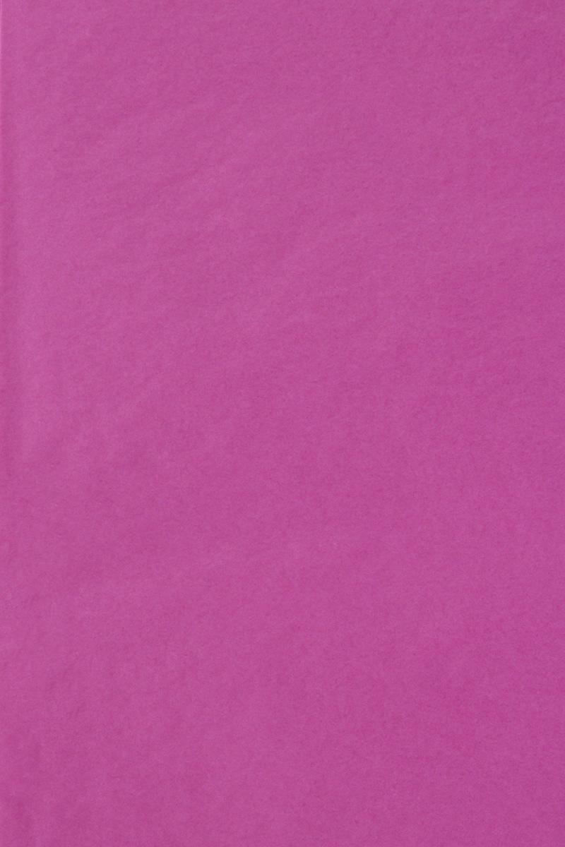 Бумага тишью Hobby and You, цвет: фуксия, 50 х 70 см, 3 листаRSP-202SБумага тишью Hobby and You - это тонкая, нежная и привлекательная декоративная бумага. Она производится из беленой сульфатной целлюлозы, получаемой из древесины деревьев хвойных пород. Бумага тишью Hobby and You идеально подходит для стильного оформления подарков и для создания помпонов, цветов, гирлянд и другого декора.Такой упаковочный элемент прекрасно дополнит любую упаковку и сделает ее яркой и праздничной.Размер бумаги тишью: 50 х 70 см.