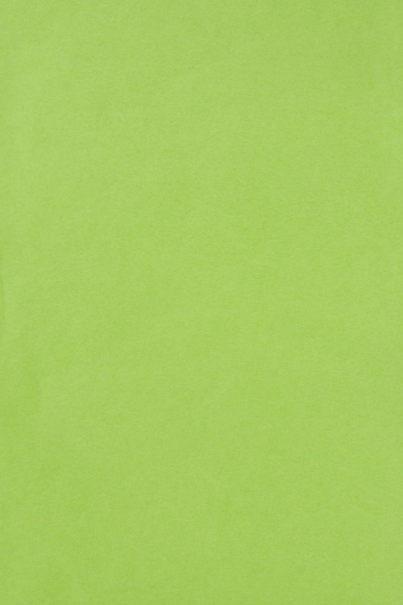 Бумага тишью Hobby and You, цвет: салатовый, 50 х 70 см, 3 листаNLED-454-9W-BKБумага тишью Hobby and You - это тонкая, нежная и привлекательная декоративная бумага. Она производится из беленой сульфатной целлюлозы, получаемой из древесины деревьев хвойных пород. Бумага тишью Hobby and You идеально подходит для стильного оформления подарков и для создания помпонов, цветов, гирлянд и другого декора.Такой упаковочный элемент прекрасно дополнит любую упаковку и сделает ее яркой и праздничной.Размер бумаги тишью: 50 х 70 см.