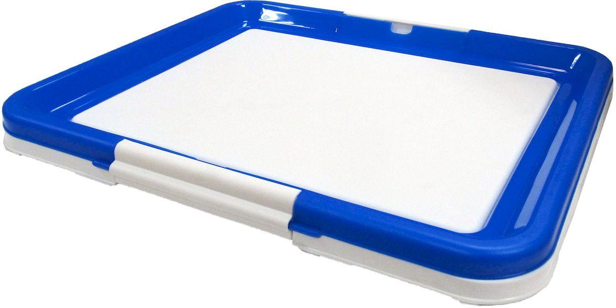 Туалет-лоток  OUT! , средний, с фиксатором, цвет: синий, 48х41х3,5 см