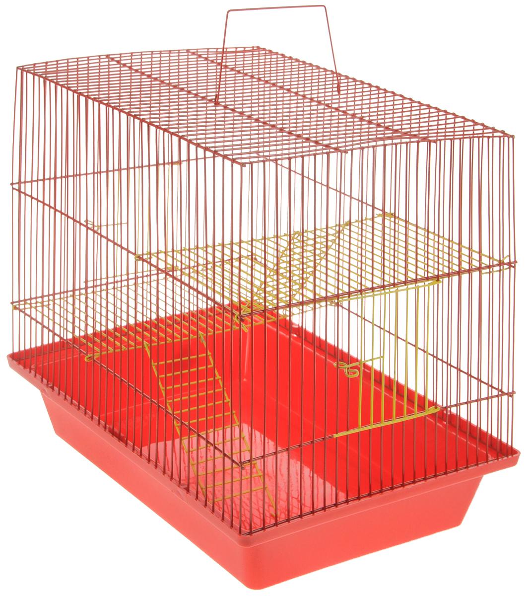Клетка для грызунов ЗооМарк Гризли, 3-этажная, цвет: красный поддон, красная решетка, желтые этажи, 41 х 30 х 36 см. 230ж640_синий, зеленыйКлетка ЗооМарк Гризли, выполненная из полипропилена и металла, подходит для мелких грызунов. Изделие трехэтажное. Клетка имеет яркий поддон, удобна в использовании и легко чистится. Сверху имеется ручка для переноски.Такая клетка станет уединенным личным пространством и уютным домиком для маленького грызуна.