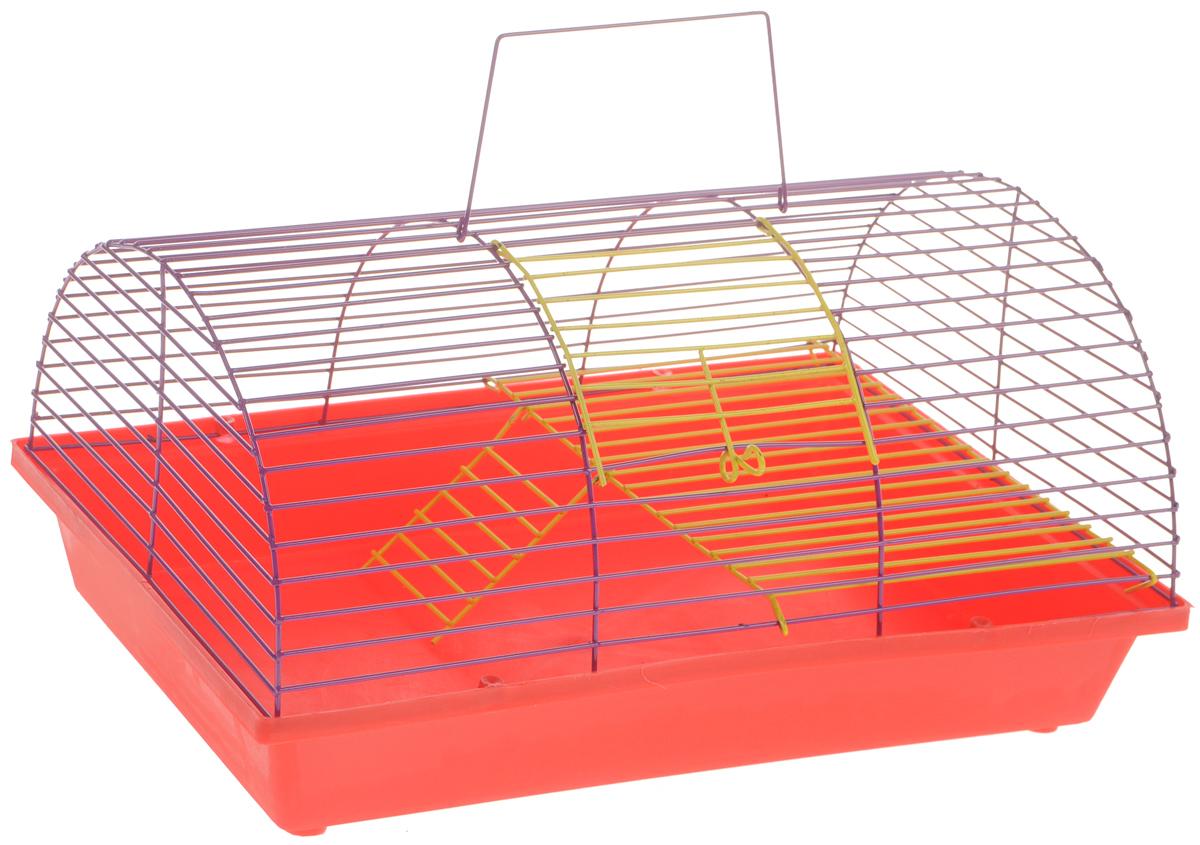 Клетка для грызунов ЗооМарк, цвет: красный поддон, ярко-фиолетовая решетка, 36 х 23 х 17,5 см. 110ж240ж_синий, фиолетовый, желтыйКлетка ЗооМарк, выполненная из полипропилена и металла, подходит для грызунов. Она имеет яркий поддон, удобна в использовании и легко чистится. Клетка оснащена вторым ярусом с лесенкой, выполненных из металла.Такая клетка станет уединенным пространством и уютным домиком для маленького грызуна.