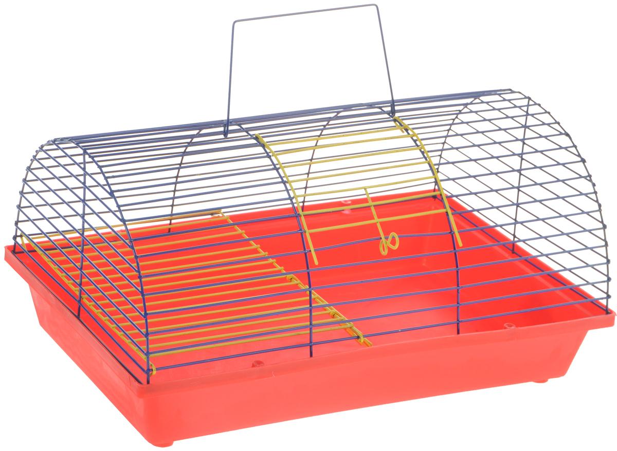 Клетка для грызунов ЗооМарк, цвет: красный поддон, синяя решетка, 36 х 23 х 17,5 см. 110ж230КЗКлетка ЗооМарк, выполненная из полипропилена и металла, подходит для грызунов. Она имеет яркий поддон, удобна в использовании и легко чистится. Клетка оснащена вторым ярусом с лесенкой, выполненных из металла.Такая клетка станет уединенным пространством и уютным домиком для маленького грызуна.