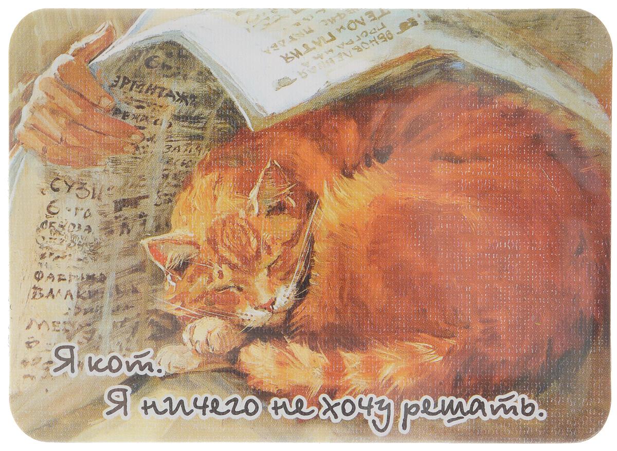 Магнит Я кот. Я ничего не хочу решать, 6,8 х 9,4 смRG-D31SМагнит Я кот. Я ничего не хочу решать прекрасно подойдет в качестве сувенира. Изделие оформлено красочным рисунком и дополнено надписью Я кот. Я ничего не хочу решать.Магнит можно прикрепить на любую металлическую поверхность. С помощью магнитов вы можете создать собственную мини-галерею, а также сделать оригинальный подарок вашим близким!Художник: Мария Павлова.Размер магнита: 6,8 х 9,4 см.
