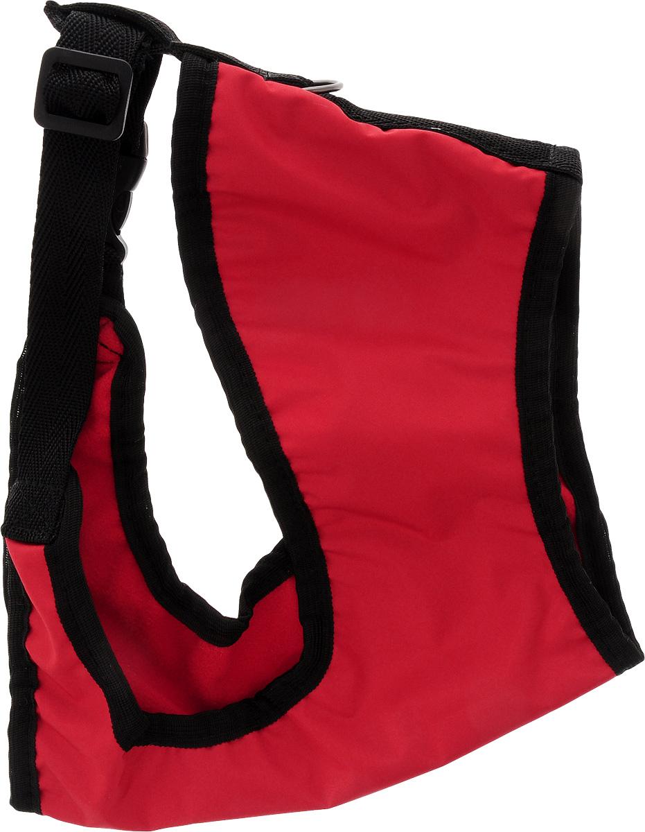 Шлейка для собак ЗооМарк, цвет: красный, черный. Размер 3DT-7333Шлейка для собак ЗооМарк выполненаиз оксфорда, а на подкладке используется флис. Изделие оснащено специальным крючком, к которому вы с легкостью сможете прикрепить поводок. Шлейка имеет застежку фастекс и регулируется при помощи пряжки.Шлейка - это альтернатива ошейнику. Правильноподобранная шлейка не стесняет движенияпитомца, не натирает кожу, поэтому животноечувствует себя в ней уверенно и комфортно.Изделие отличается высоким качеством,удобством и универсальностью.Обхват груди: 25-30 см. Длина спинки: 17 см. Ширина ремней: 2 см.