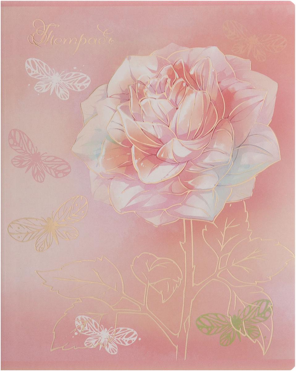Феникс+ Тетрадь Нежные цветы 48 листов в клетку цвет розовый72523WDТетрадь Феникс+ Нежные цветы подойдет для школьников, студентов для различных записей.Обложка с закругленными углами, выполненная из плотного картона, позволит сохранить тетрадь в аккуратном состоянии на протяжении всего времени использования. Лицевая сторона дополнена изображением цветка.Внутренний блок тетради, соединенный двумя металлическими скрепками, состоит из 48 листов белой бумаги. Стандартная линовка в клетку голубого цвета дополнена красными полями.