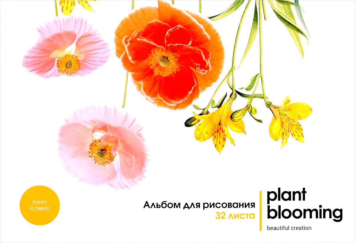 ArtSpace Альбом для рисования Цветы Plant Blooming 32 листа72523WDАльбом для рисования ArtSpace Цветы. Plant Blooming порадует маленького художника и вдохновит его на творчество.Альбом изготовлен из белоснежной бумаги с яркой обложкой из плотного картона.Внутренний блок альбома состоит из 32 листов. Склейка с твердой картонной подложкой позволяет использовать альбом вне дома. Крепление блока выполнено по технологии, которая предусматривает извлечение листов без его разрушения. Высокое качество бумаги позволяет рисовать в альбоме карандашами, фломастерами, акварельными и гуашевыми красками.