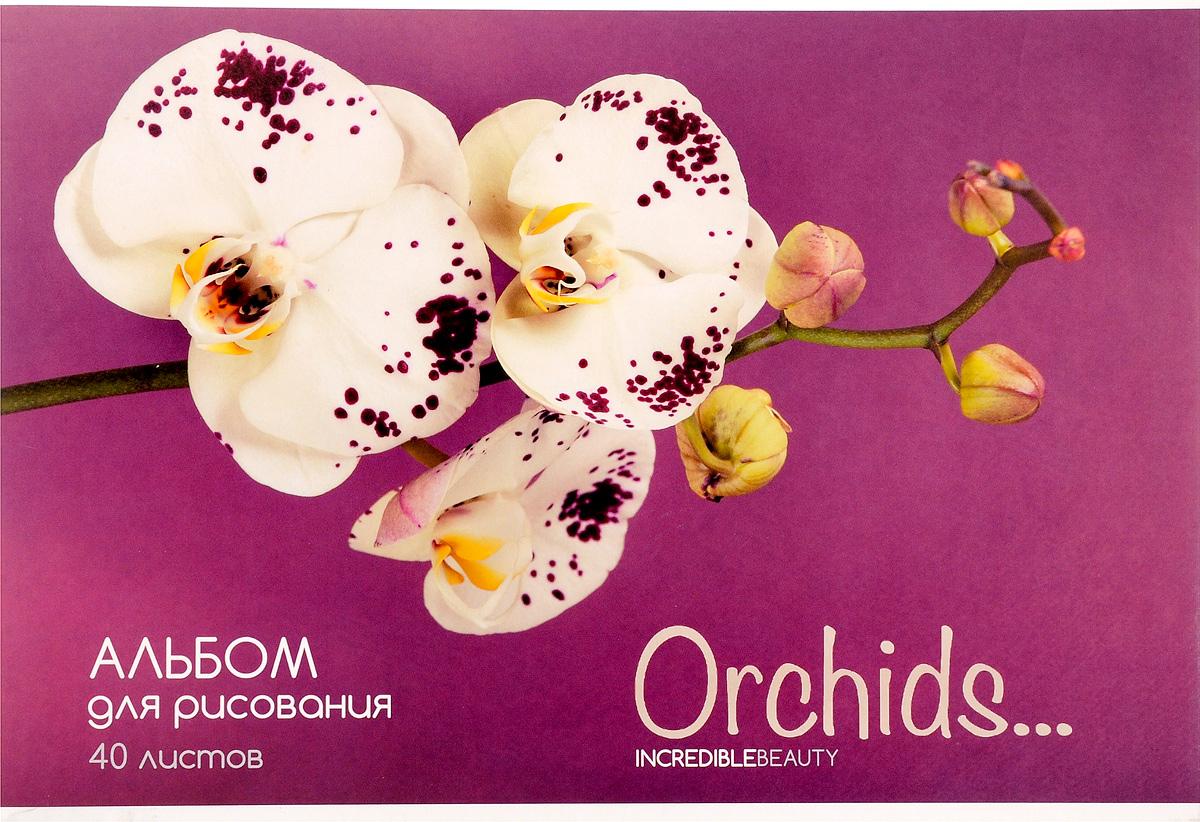 ArtSpace Альбом для рисования Цветы Орхидеи 40 листовC13S041944Альбом для рисования ArtSpace Цветы. Орхидеи будет вдохновлять ребенка на творческий процесс.Альбом изготовлен из белоснежной бумаги с яркой обложкой из плотного картона, оформленной изображением орхидей. Внутренний блок альбома состоит из 40 листов бумаги. Способ крепления - скрепки.Высокое качество бумаги позволяет рисовать в альбоме карандашами, фломастерами, акварельными и гуашевыми красками.Во время рисования совершенствуются ассоциативное, аналитическое и творческое мышления. Занимаясь изобразительным творчеством, малыш тренирует мелкую моторику рук, становится более усидчивым и спокойным.