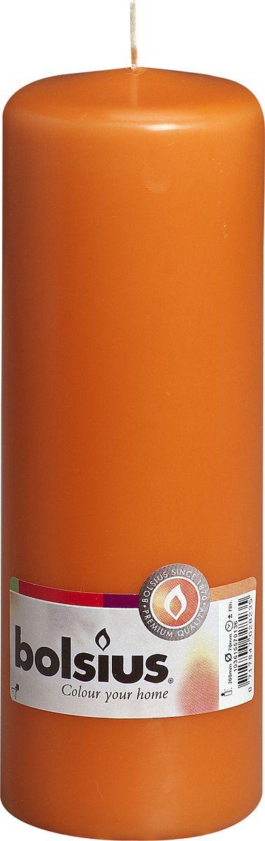 Свеча Bolsius, цвет: оранжевый, высота 20 см103615570136Свеча Bolsius выполнена из парафина в классическом стиле. Ее можно поставить в любое место и она станет ярким украшением интерьера. Свеча Bolsius создаст незабываемую атмосферу, будь то торжество, романтический вечер или будничный день.