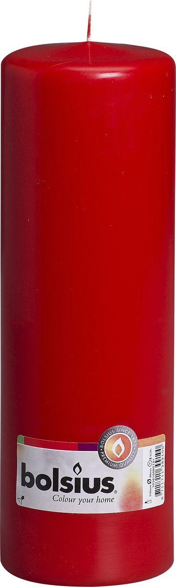 Свеча Bolsius, цвет: красный, высота 25 смFS-80299Свеча Bolsius выполнена из парафина в классическом стиле. Ее можно поставить в любое место и она станет ярким украшением интерьера. Свеча Bolsius создаст незабываемую атмосферу, будь то торжество, романтический вечер или будничный день.
