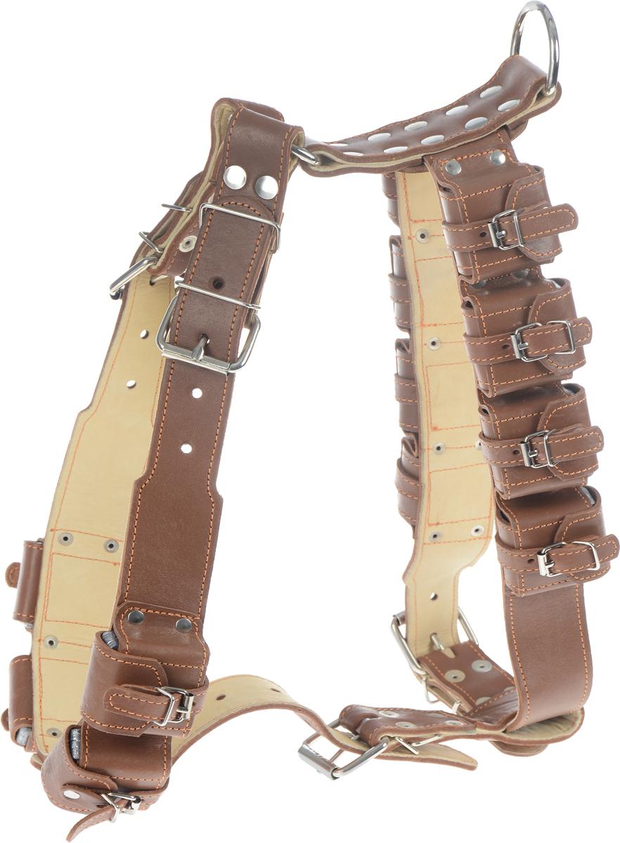 Шлея для собак CoLLaR, с утяжелителями, цвет: коричневый, кремовый, ширина 4,5 см, обхват груди 85-96 смDM-7345Шлея CoLLaR, выполненная из натуральной кожи, оснащена утяжелителями и может использоваться при выгуле или дрессировке бойцовых и служебных собак крупных пород при нехватке нагрузки и недостаточной мышечной массе. Нагрузку можно регулировать путем изъятия грузиков из расстегивающихся карманов.Крепкие металлические элементы делают ее надежной и долговечной. Размер регулируется при помощи пряжки. Шлея для собак CoLLaR отличается высоким качеством, удобством и универсальностью.Обхват груди: 85-96 см.Обхват шеи: 69-87 см.Ширина шлеи: 4,5 см.Количество грузиков: 12.Вес грузика: 450 г.