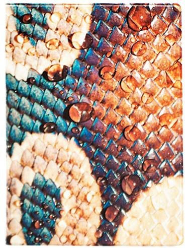 Обложка для паспорта Kawaii Factory Snakeskin, цвет: оранжевый, бирюзовый. KW064-000041A52_108Обложка для паспорта от Kawaii Factory- оригинальный и стильный аксессуар, который придется по душе истинным модникам и поклонникам интересного и необычного дизайна.Качественная обложка выполнена из легкого и прочного ПВХ с приятной фактурой, который надежно защищает важный документ от пыли и влаги. Рисунок нанесён специальным образом и защищён от стирания. Изделие раскладывается пополам. Внутри размещены два накладных кармашка из прозрачного ПВХ. Простая, но в то же время стильная обложка для паспорта определенно выделит своего обладателя из толпы и непременно поднимет настроение.