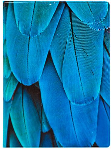Обложка для паспорта Kawaii Factory Feather blue, цвет: синий. KW064-000030993224Обложка для паспорта от Kawaii Factory- оригинальный и стильный аксессуар, который придется по душе истинным модникам и поклонникам интересного и необычного дизайна.Качественная обложка выполнена из легкого и прочного ПВХ с приятной фактурой, который надежно защищает важный документ от пыли и влаги. Рисунок нанесён специальным образом и защищён от стирания. Изделие раскладывается пополам. Внутри размещены два накладных кармашка из прозрачного ПВХ. Простая, но в то же время стильная обложка для паспорта определенно выделит своего обладателя из толпы и непременно поднимет настроение.