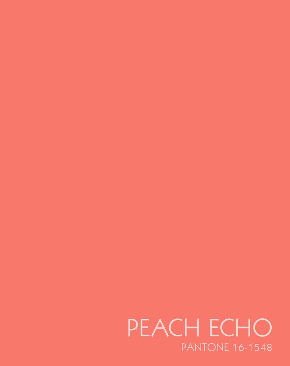 Канц-Эксмо Записная книжка Цвета года Персиковое настроение 96 листов в клетку72523WDЗаписная книжка в плотной гибкой обложке А5 , 96 листов. Обложка с матовой ламинацией и выборочным лакированием, пантонная печать. Форзацы белые, бумага 60гр/м2, белая, клетка.