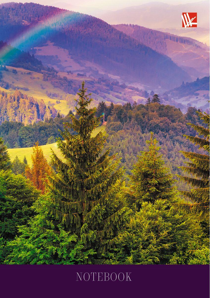 Канц-Эксмо Записная книжка Пейзаж Радуга над лесом 64 листа в клетку канц эксмо записная книжка орнамент розовые пионы 64 листа в клетку
