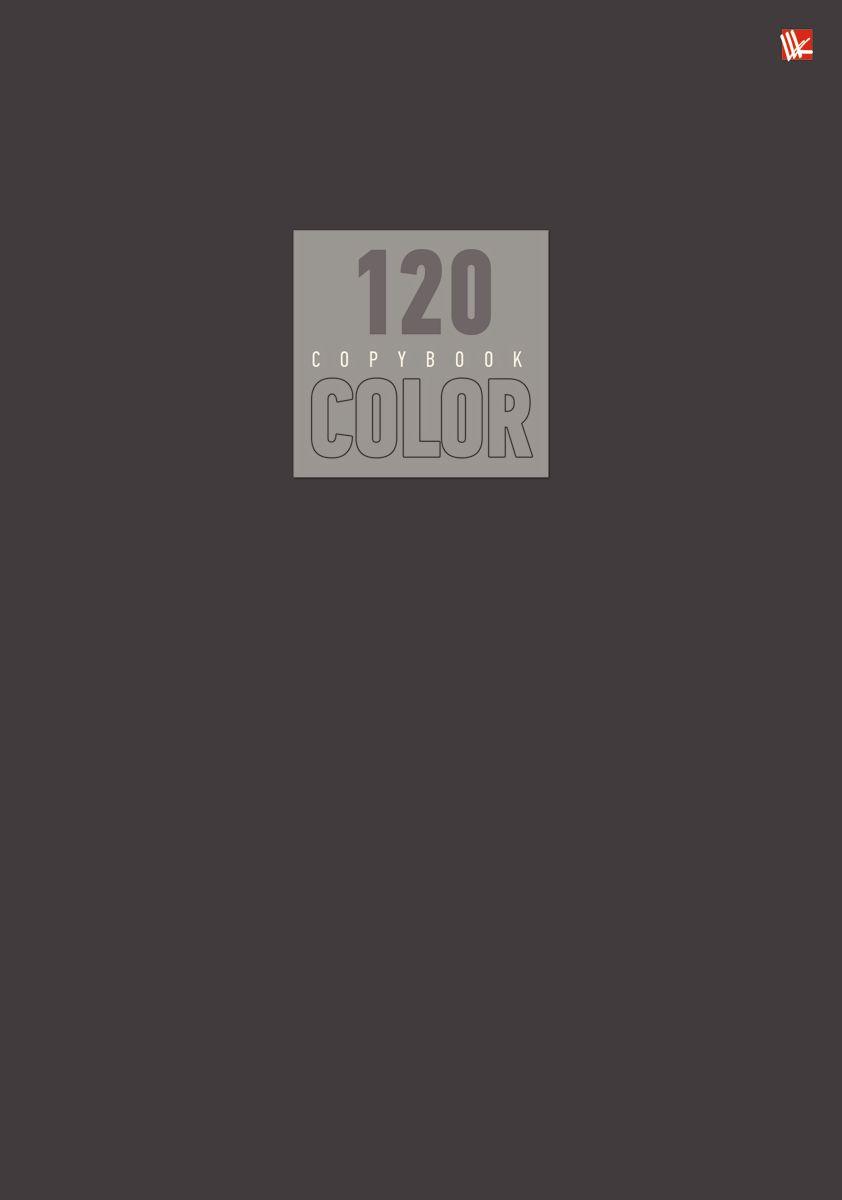 Канц-Эксмо Тетрадь Стиль и цвет 120 листов в клетку цвет серый72523WDТетрадь А4 120 листов на швейно-клеевом креплении, клетка. Обложка мелованный картон повышенного качества, матовая ламинация. Бумага офсет 60г/м2