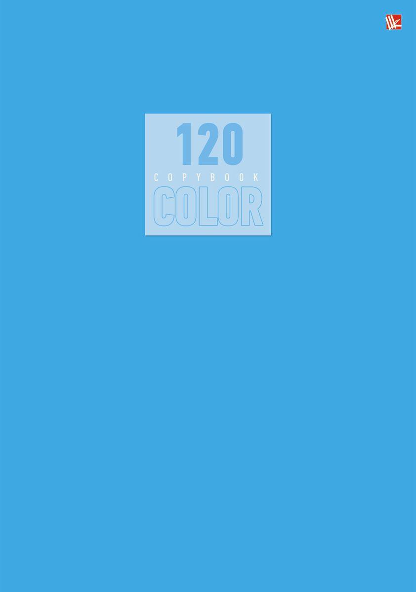 Канц-Эксмо Тетрадь Стиль и цвет 120 листов в клетку цвет голубой Т4120519172523WDТетрадь А4 120 листов на швейно-клеевом креплении, клетка. Обложка мелованный картон повышенного качества, матовая ламинация. Бумага офсет 60г/м2