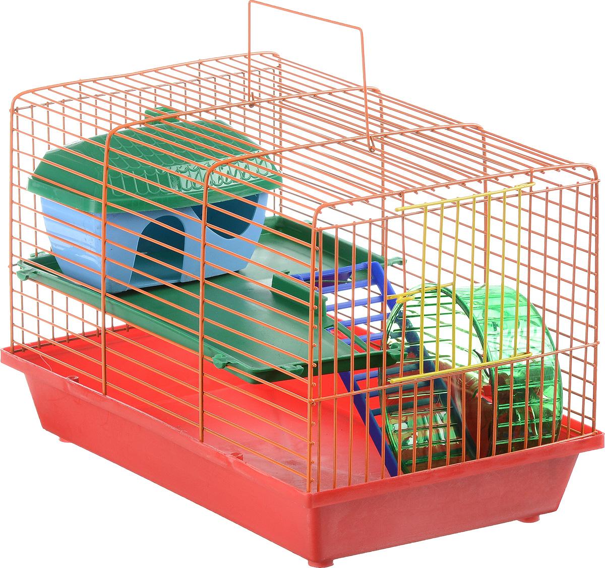 Клетка для грызунов ЗооМарк, 2-этажная, цвет: красный поддон, оранжевая решетка, зеленые этажи, 36 х 22 х 24 см0120710Клетка ЗооМарк, выполненная из полипропилена и металла, подходит для мелких грызунов. Изделие двухэтажное, оборудовано лестницей, колесом для подвижных игр и пластиковым домиком. Клетка имеет яркий поддон, удобна в использовании и легко чистится. Сверху имеется ручка для переноски. Такая клетка станет уединенным личным пространством и уютным домиком для маленького грызуна.