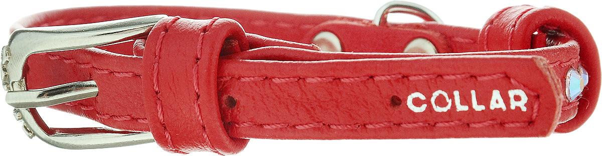 Ошейник для собак CoLLaR Glamour, цвет: красный, ширина 9 мм, обхват шеи 19-25 см0120710Ошейник CoLLaR Glamour изготовлен из кожи, устойчивой к влажности и перепадам температур. Клеевой слой, сверхпрочные нити, крепкие металлические элементы делают ошейник надежным и долговечным. Изделие отличается высоким качеством, удобством и универсальностью.Размер ошейника регулируется при помощи металлической пряжки. Имеется металлическое кольцо для крепления поводка. Ваша собака тоже хочет выглядеть стильно! Модный ошейник, декорированный стразами, станет для питомца отличным украшением и выделит его среди остальных животных. Минимальный обхват шеи: 19 см. Максимальный обхват шеи: 25 см. Ширина: 0,9 см.