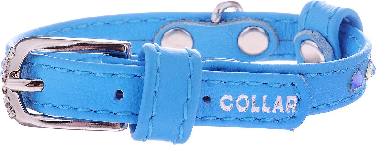 Ошейник для собак CoLLaR Glamour, цвет: синий, ширина 9 мм, обхват шеи 18-21 см00030031чОшейник CoLLaR Glamour изготовлен из кожи, устойчивой к влажности и перепадам температур. Клеевой слой, сверхпрочные нити, крепкие металлические элементы делают ошейник надежным и долговечным. Изделие отличается высоким качеством, удобством и универсальностью.Размер ошейника регулируется при помощи металлической пряжки. Имеется металлическое кольцо для крепления поводка. Ваша собака тоже хочет выглядеть стильно! Модный ошейник, декорированный стразами, станет для питомца отличным украшением и выделит его среди остальных животных. Минимальный обхват шеи: 18 см. Максимальный обхват шеи: 21 см. Ширина: 9 мм.