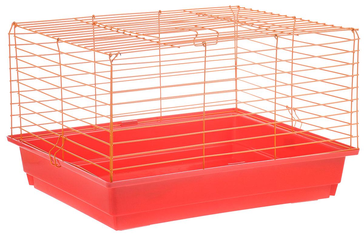Клетка для кролика ЗооМарк, цвет: красный поддон, оранжевая решетка, 50 х 35 х 30 см240_синий, фиолетовыйКлассическая клетка ЗооМарк со сплошным дном станет уединенным личным пространством и уютным домиком для кролика. Изделие выполнено из металла и пластика. Клетка надежно закрывается на защелки. Легко чистится. Для более удобной транспортировки клетку можно сложить.