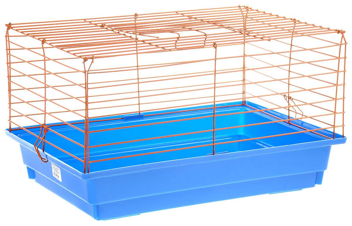 Клетка для кролика ЗооМарк, цвет: синий поддон, оранжевая решетка, 60 х 40 х 35 см0120710Классическая клетка ЗооМарк со сплошным дном станет уединенным личным пространством и уютным домиком для кролика. Изделие выполнено из металла и пластика. Клетка надежно закрывается на защелки. Легко чистится. Для более удобной транспортировки клетку можно сложить.