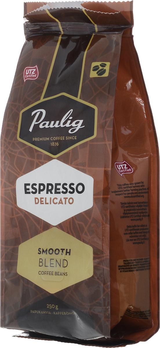 Paulig Espresso Delicato кофе в зернах, 250 г0120710Кофе в зернах Paulig Espresso Delicato - самый нежный эспрессо-бленд с восхитительным мягким вкусом. На его создание вдохновил Милан. Он изготовлен из отборных кофейных зерен 100% арабики из Бразилии и Центральной Америки. Деликатный вкус эспрессо раскрывает превосходные оттенки аромата и особую сладость во вкусе.