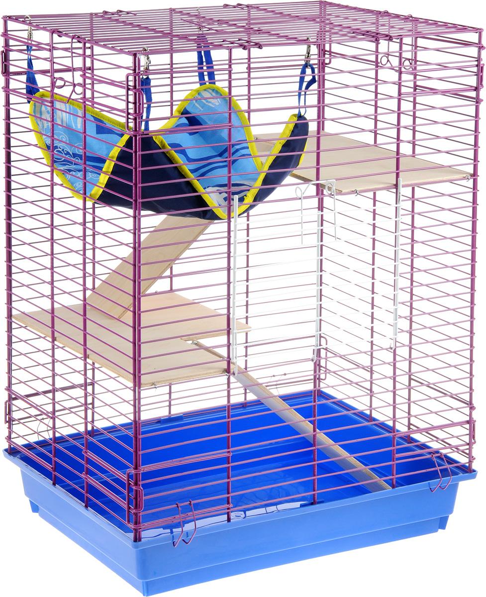 Клетка для шиншилл и хорьков ЗооМарк, цвет: синий поддон, фиолетовая решетка, 59 х 41 х 79 см0120710Клетка ЗооМарк, выполненная из полипропилена и металла, подходит для шиншилл и хорьков. Большая клетка оборудована длинными лестницами и гамаком. Изделие имеет яркий поддон, удобно в использовании и легко чистится. Сверху имеется ручка для переноски. Такая клетка станет уединенным личным пространством и уютным домиком для грызуна.